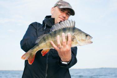 魚の行動習性を利用する釣り入門 科学が明かした「水面下の生態」のすべてを読んだ感想