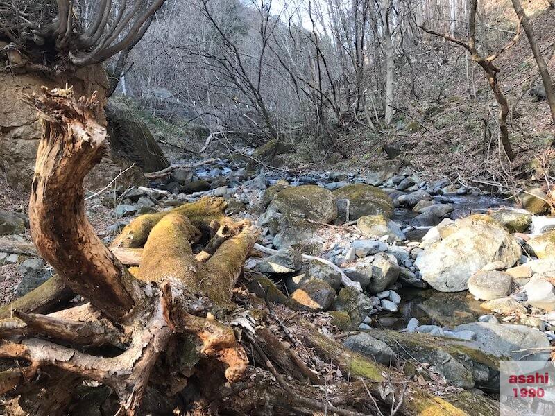 薄根川引き返した場所